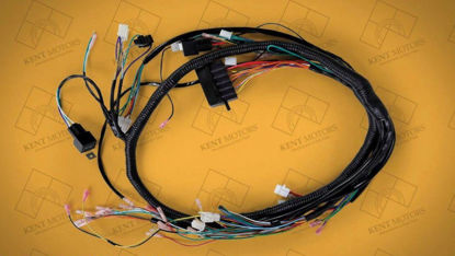 Picture of Wire Harness Complete (Sazgar Old)